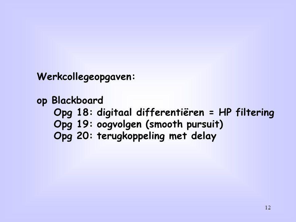 12 Werkcollegeopgaven: op Blackboard Opg 18: digitaal differentiëren = HP filtering Opg 19: oogvolgen (smooth pursuit) Opg 20: terugkoppeling met dela