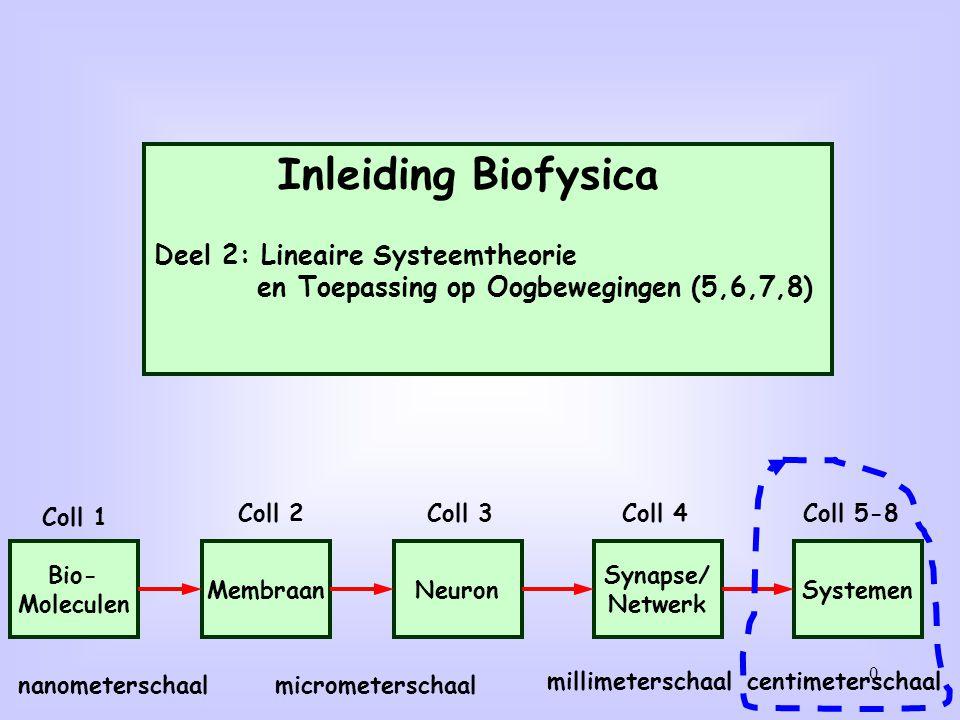 1 Deze week: Syllabus deel 2: Hoofdstuk 1 bestuderen BB course documents: introeyemovements.pdf lezen Werkcollege opgaven: zie pags.