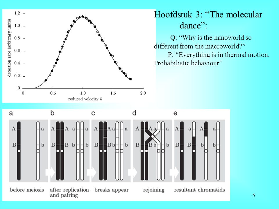Hoofdstuk 3: The molecular dance : Q: Why is the nanoworld so different from the macroworld? P: Everything is in thermal motion.