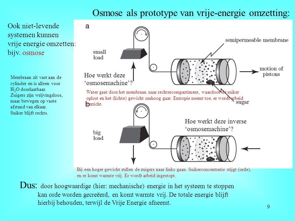 Osmose als prototype van vrije-energie omzetting: Ook niet-levende systemen kunnen vrije energie omzetten: bijv. osmose Hoe werkt deze 'osmosemachine'