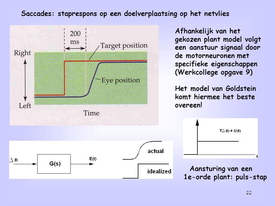 22 Saccades: staprespons op een doelverplaatsing op het netvlies Afhankelijk van het gekozen plant model volgt een aanstuur signaal door de motorneuro