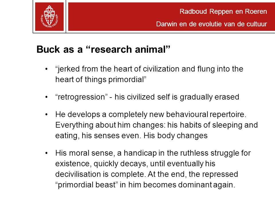 "Radboud Reppen en Roeren Darwin en de evolutie van de cultuur Buck as a ""research animal"" ""jerked from the heart of civilization and flung into the he"