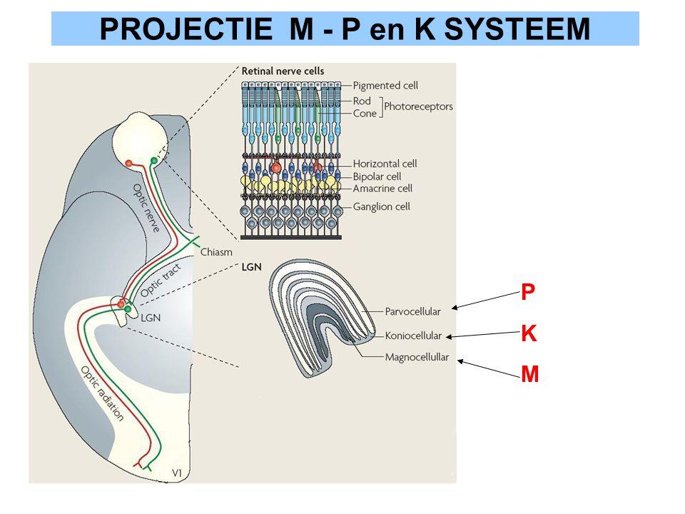 PROJECTIE M - P en K SYSTEEM PKMPKM