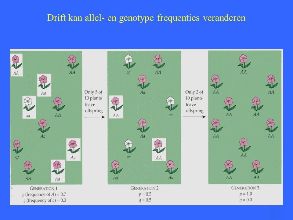 Drift kan allel- en genotype frequenties veranderen