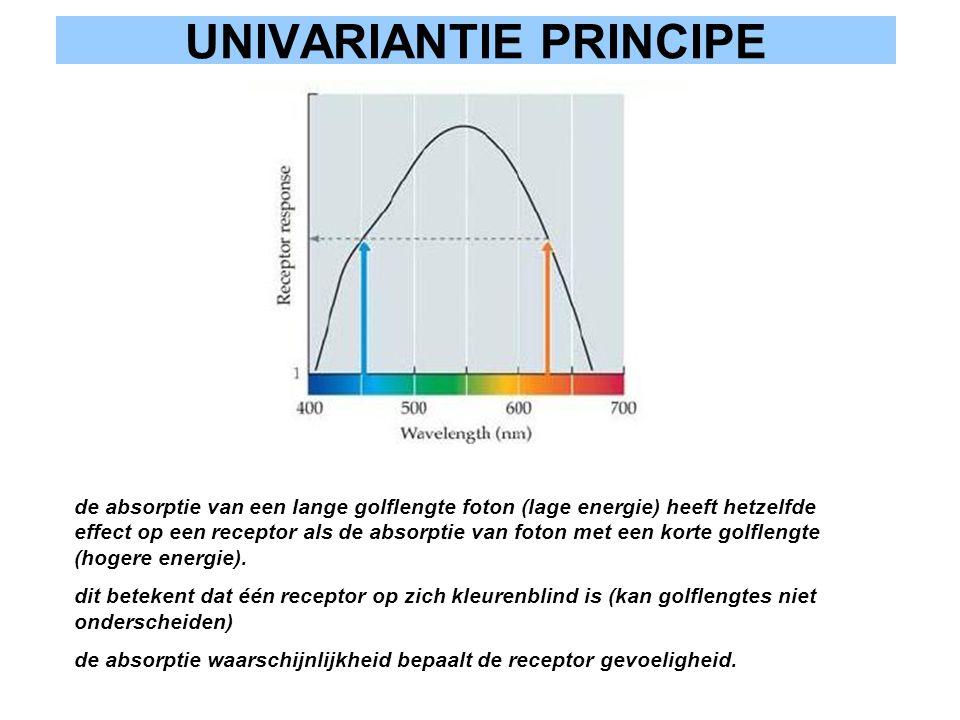 UNIVARIANTIE PRINCIPE de absorptie van een lange golflengte foton (lage energie) heeft hetzelfde effect op een receptor als de absorptie van foton met