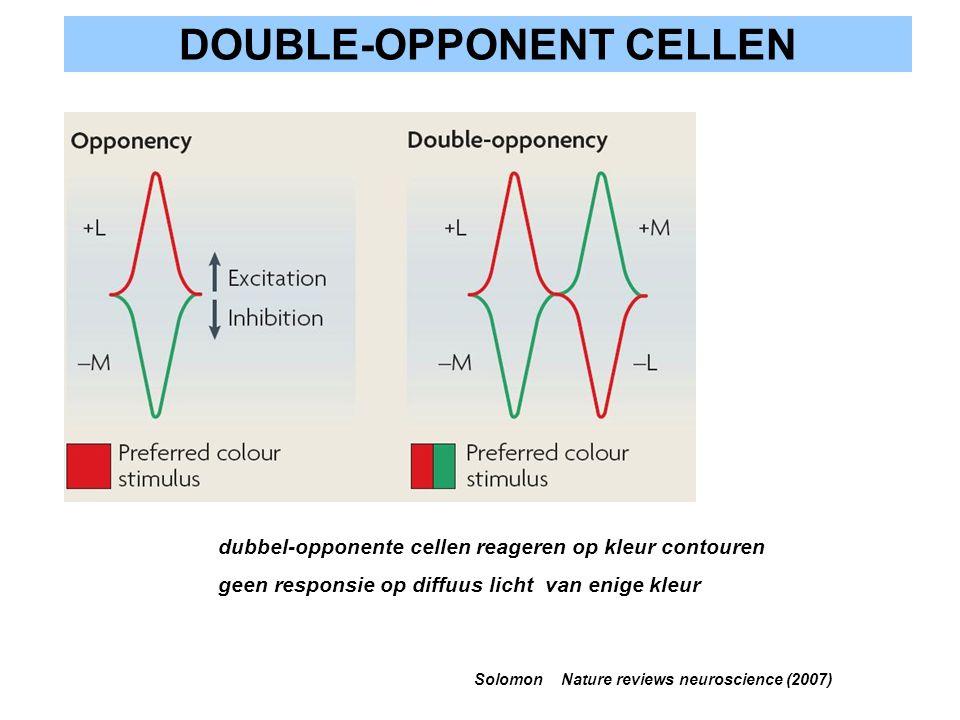 DOUBLE-OPPONENT CELLEN Solomon Nature reviews neuroscience (2007) dubbel-opponente cellen reageren op kleur contouren geen responsie op diffuus licht
