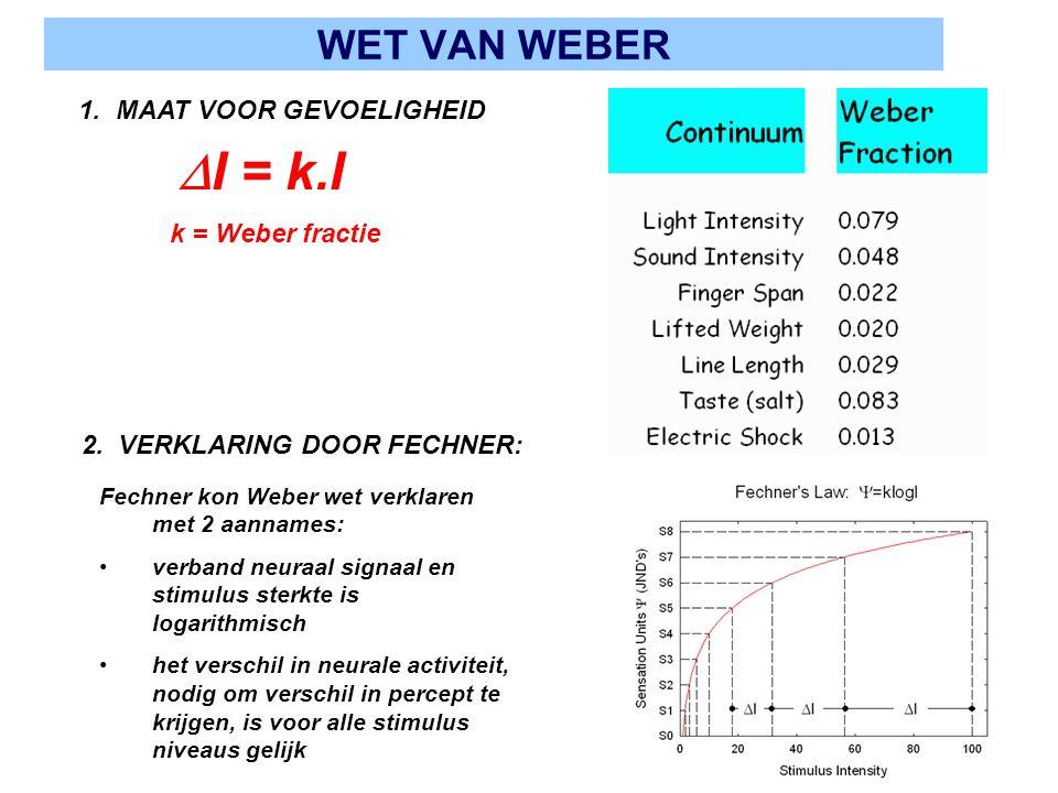 WET VAN WEBER 2. VERKLARING DOOR FECHNER: 1. MAAT VOOR GEVOELIGHEID Fechner kon Weber wet verklaren met 2 aannames: verband neuraal signaal en stimulu