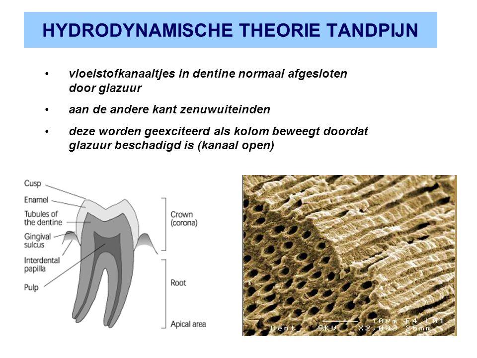 HYDRODYNAMISCHE THEORIE TANDPIJN vloeistofkanaaltjes in dentine normaal afgesloten door glazuur aan de andere kant zenuwuiteinden deze worden geexciteerd als kolom beweegt doordat glazuur beschadigd is (kanaal open)