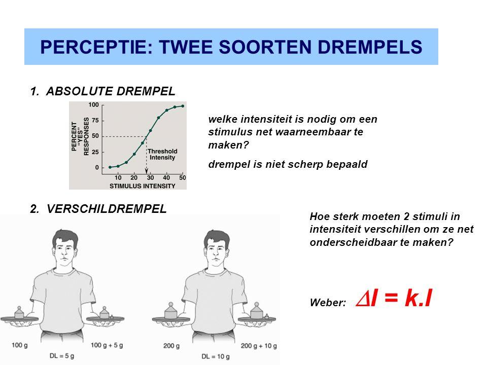 PERCEPTIE: TWEE SOORTEN DREMPELS 2. VERSCHILDREMPEL 1. ABSOLUTE DREMPEL Hoe sterk moeten 2 stimuli in intensiteit verschillen om ze net onderscheidbaa