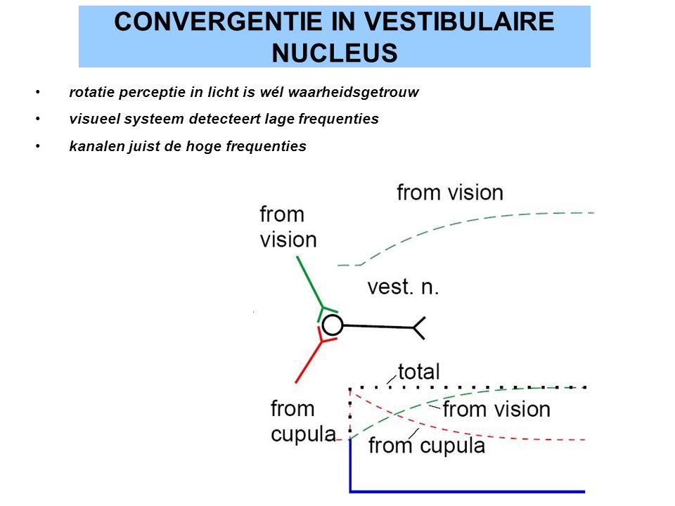 CONVERGENTIE IN VESTIBULAIRE NUCLEUS rotatie perceptie in licht is wél waarheidsgetrouw visueel systeem detecteert lage frequenties kanalen juist de h