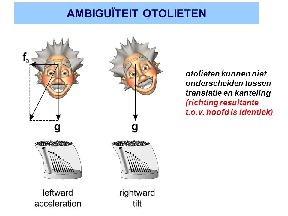 AMBIGUÏTEIT OTOLIETEN otolieten kunnen niet onderscheiden tussen translatie en kanteling (richting resultante t.o.v. hoofd is identiek)