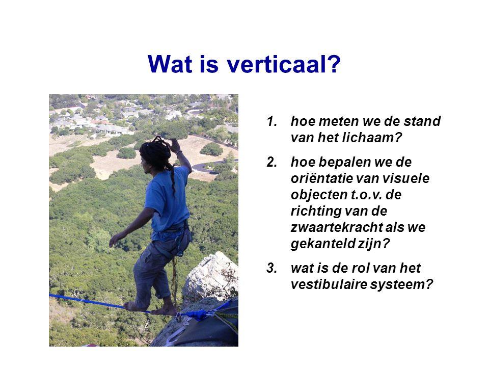 Wat is verticaal? 1.hoe meten we de stand van het lichaam? 2.hoe bepalen we de oriëntatie van visuele objecten t.o.v. de richting van de zwaartekracht