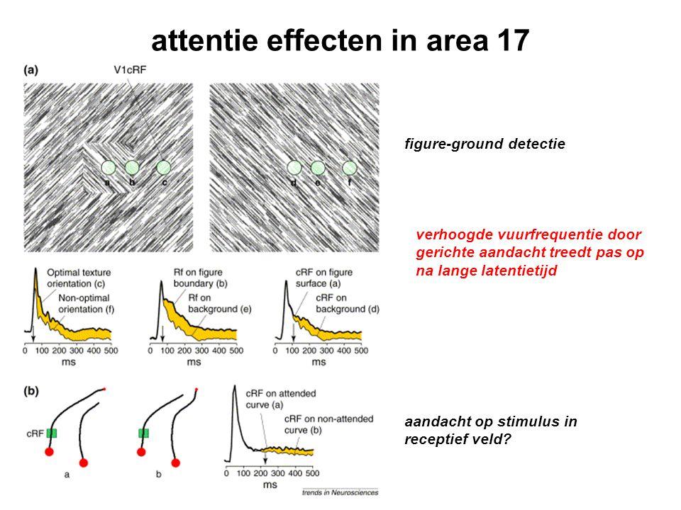 attentie effecten in area 17 figure-ground detectie aandacht op stimulus in receptief veld? verhoogde vuurfrequentie door gerichte aandacht treedt pas