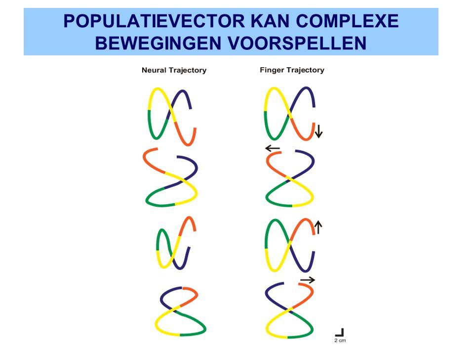 POPULATIEVECTOR KAN COMPLEXE BEWEGINGEN VOORSPELLEN