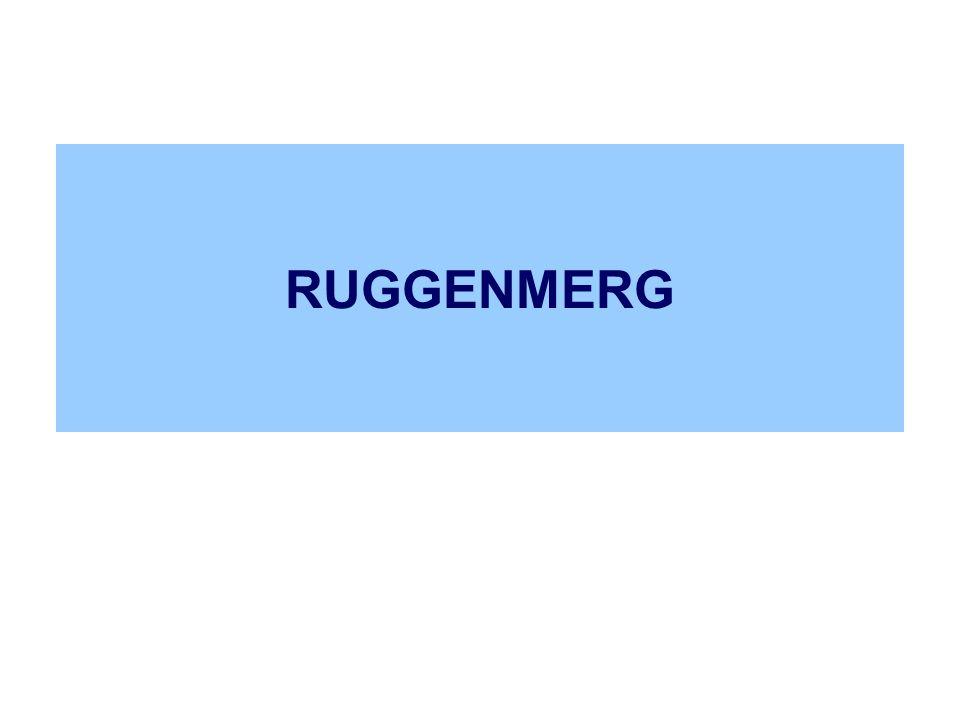 RUGGENMERG