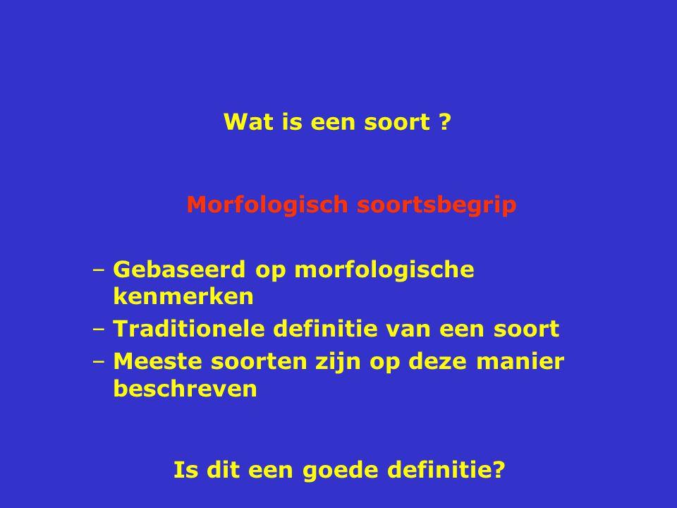 Wat is een soort ? Morfologisch soortsbegrip –Gebaseerd op morfologische kenmerken –Traditionele definitie van een soort –Meeste soorten zijn op deze