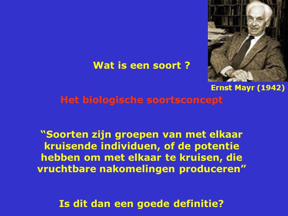 """Wat is een soort ? Het biologische soortsconcept """"Soorten zijn groepen van met elkaar kruisende individuen, of de potentie hebben om met elkaar te kru"""
