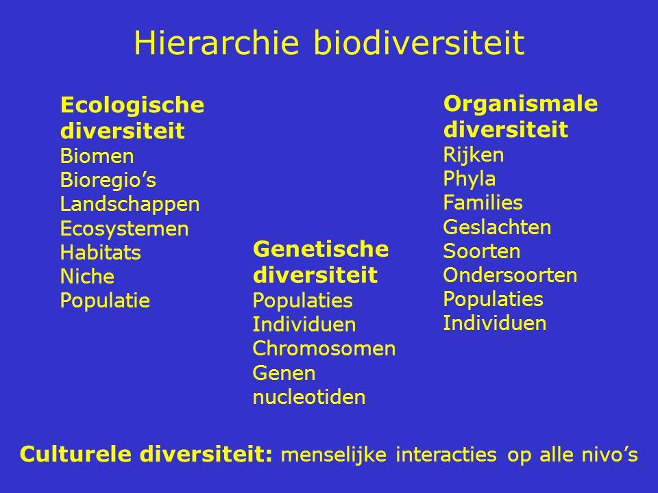 Hierarchie biodiversiteit Ecologische diversiteit Biomen Bioregio's Landschappen Ecosystemen Habitats Niche Populatie Organismale diversiteit Rijken P