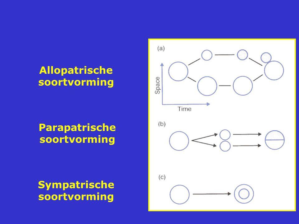 Allopatrische soortvorming Parapatrische soortvorming Sympatrische soortvorming