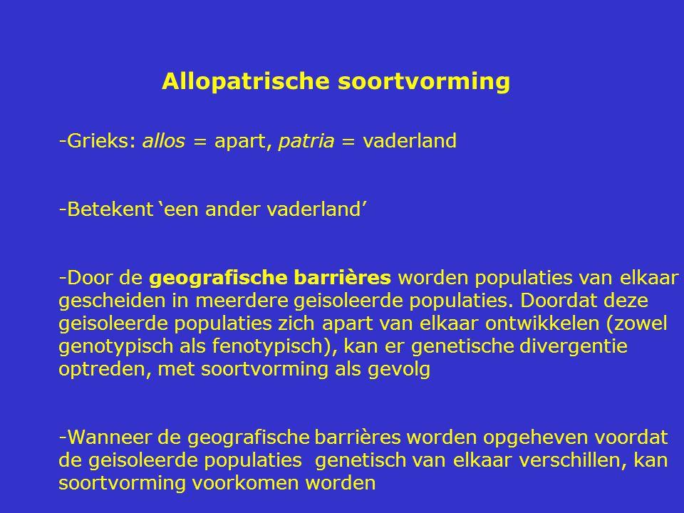 Allopatrische soortvorming -Grieks: allos = apart, patria = vaderland -Betekent 'een ander vaderland' -Door de geografische barrières worden populaties van elkaar gescheiden in meerdere geisoleerde populaties.