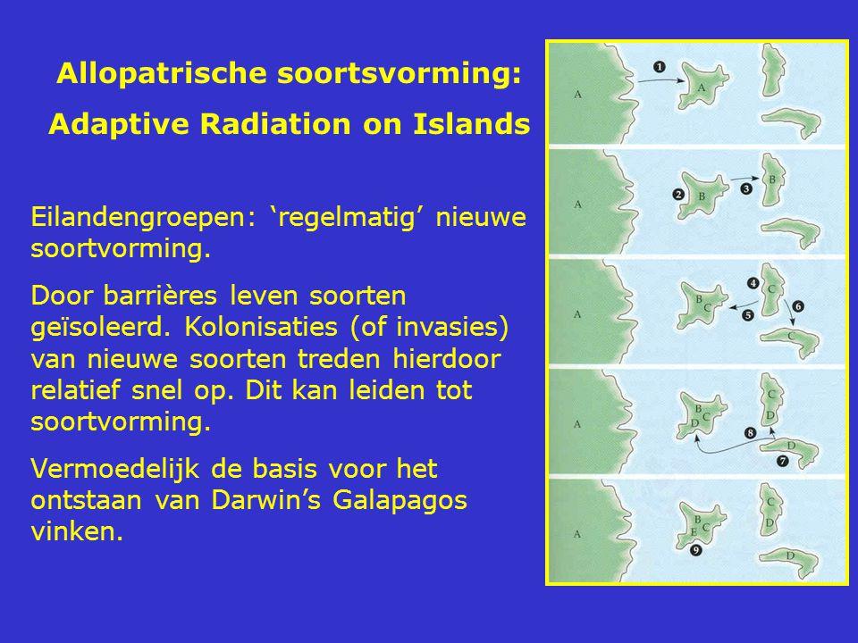 Allopatrische soortsvorming: Adaptive Radiation on Islands Eilandengroepen: 'regelmatig' nieuwe soortvorming. Door barrières leven soorten geïsoleerd.