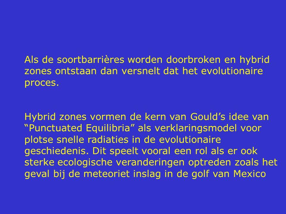 Als de soortbarrières worden doorbroken en hybrid zones ontstaan dan versnelt dat het evolutionaire proces.