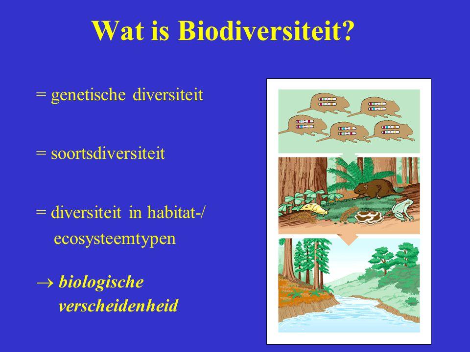Wat is Biodiversiteit? = genetische diversiteit = soortsdiversiteit = diversiteit in habitat-/ ecosysteemtypen  biologische verscheidenheid