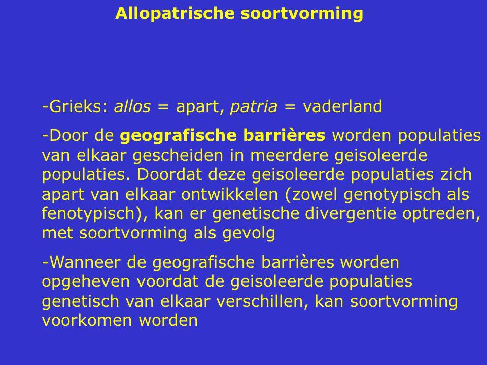 Allopatrische soortvorming -Grieks: allos = apart, patria = vaderland -Door de geografische barrières worden populaties van elkaar gescheiden in meerdere geisoleerde populaties.