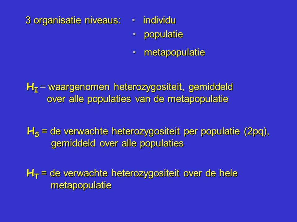 3 organisatie niveaus: individu individu populatie populatie metapopulatie metapopulatie H I waargenomen heterozygositeit, gemiddeld over alle populaties van de metapopulatie H I = waargenomen heterozygositeit, gemiddeld over alle populaties van de metapopulatie H S = de verwachte heterozygositeit per populatie (2pq), gemiddeld over alle populaties H T = de verwachte heterozygositeit over de hele metapopulatie
