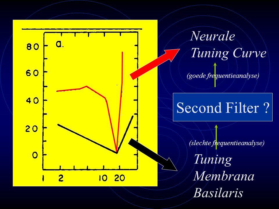 Tuning Membrana Basilaris Neurale Tuning Curve Second Filter .