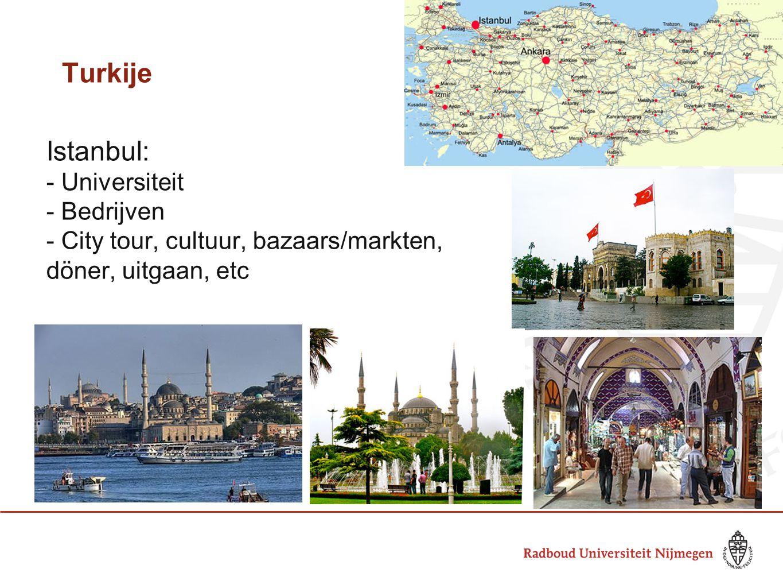 Turkije Istanbul: - Universiteit - Bedrijven - City tour, cultuur, bazaars/markten, döner, uitgaan, etc