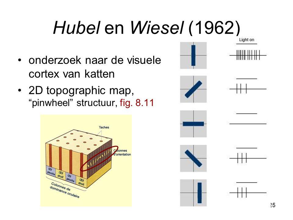 25 Hubel en Wiesel (1962) onderzoek naar de visuele cortex van katten 2D topographic map, pinwheel structuur, fig.