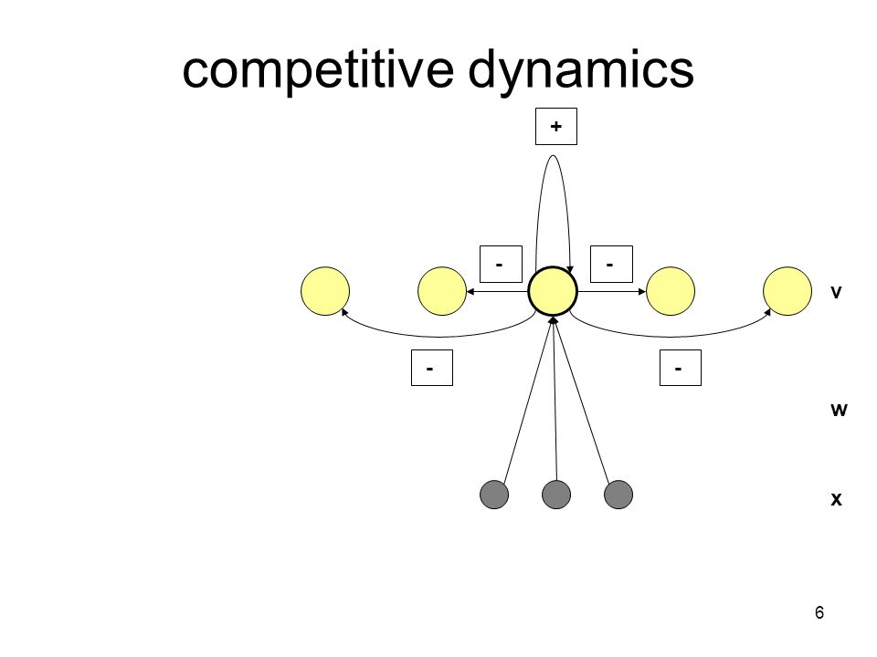 6 competitive dynamics v x w + - - - -