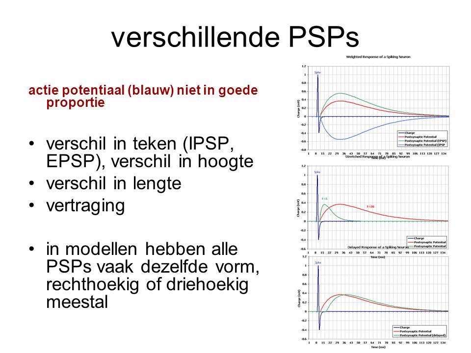 verschillende PSPs actie potentiaal (blauw) niet in goede proportie verschil in teken (IPSP, EPSP), verschil in hoogte verschil in lengte vertraging i
