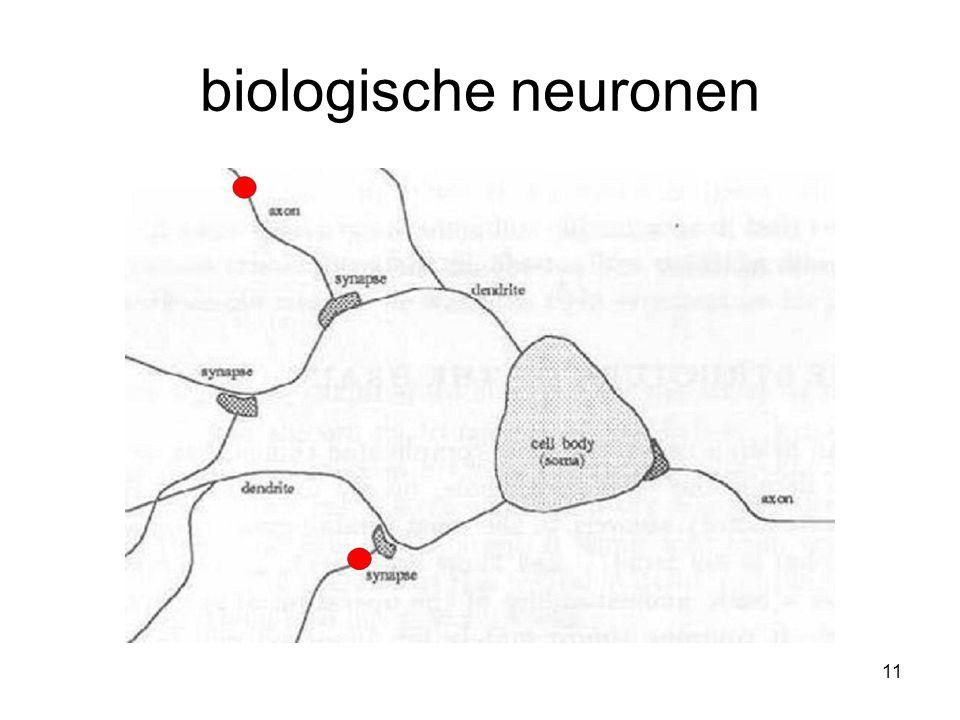 11 biologische neuronen