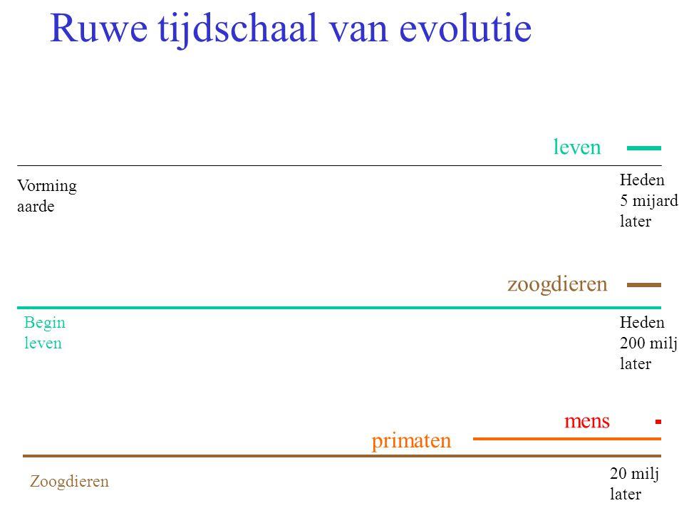Ruwe tijdschaal van evolutie Vorming aarde Heden 5 mijard later Begin leven Heden 200 milj later Zoogdieren 20 milj later primaten mens zoogdieren leven