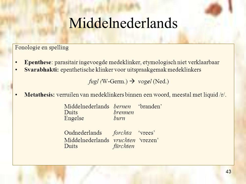 43 Middelnederlands Fonologie en spelling Epenthese: parasitair ingevoegde medeklinker, etymologisch niet verklaarbaar Svarabhakti: epenthetische klin