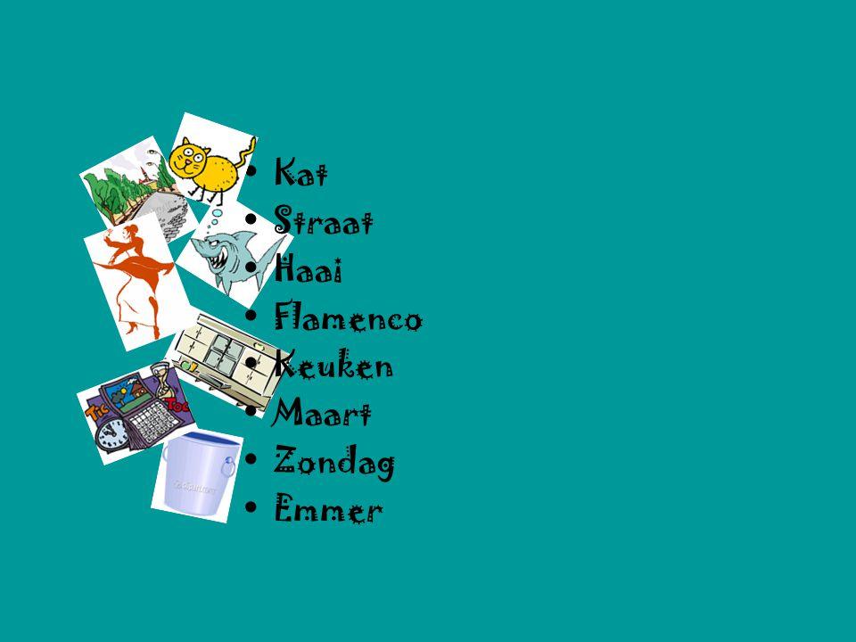 Kat Straat Haai Flamenco Keuken Maart Zondag Emmer