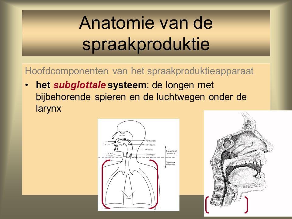 38 Hoofdcomponenten van het spraakproduktieapparaat Anatomie van de spraakproduktie