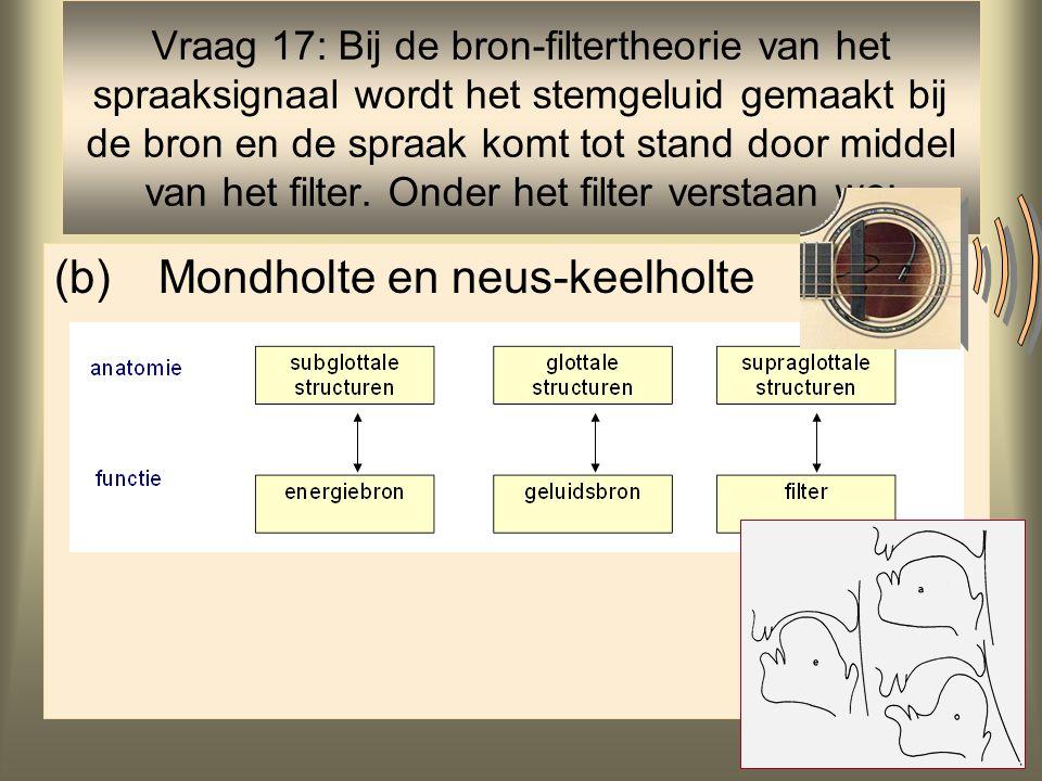 37 (b)Mondholte en neus-keelholte Vraag 17: Bij de bron-filtertheorie van het spraaksignaal wordt het stemgeluid gemaakt bij de bron en de spraak komt tot stand door middel van het filter.