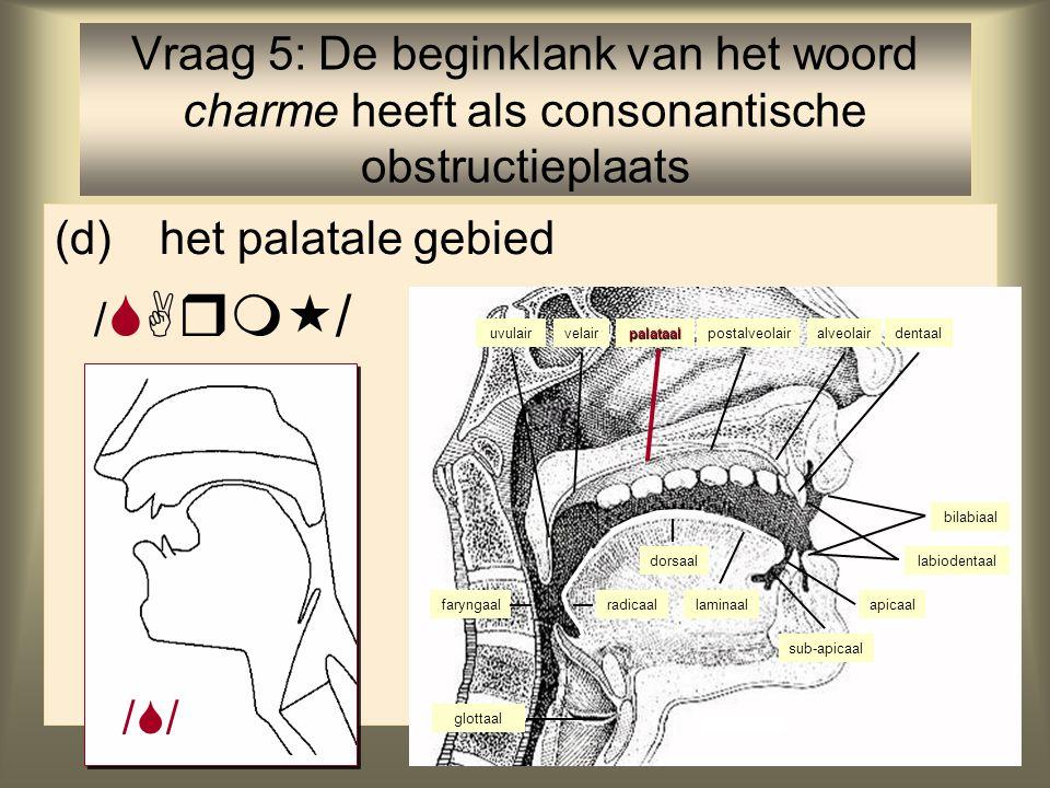 6 (d)het palatale gebied /  / Vraag 5: De beginklank van het woord charme heeft als consonantische obstructieplaats faryngaal glottaal velair palataal alveolairuvulair labiodentaal postalveolair bilabiaal dentaal radicaal dorsaal laminaalapicaal sub-apicaal ////