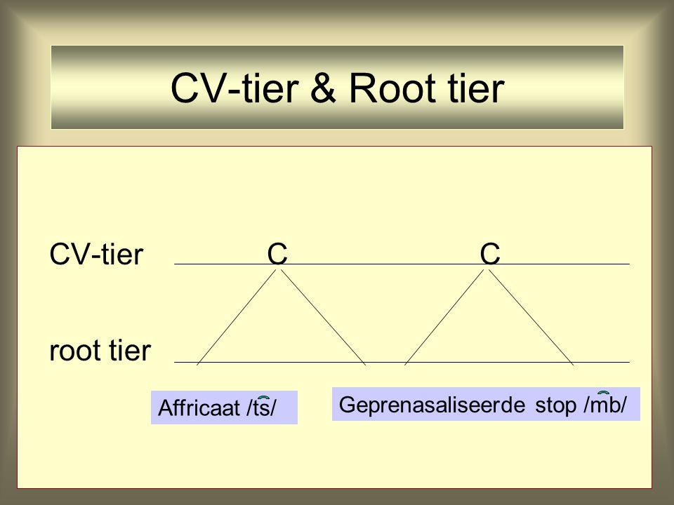 CV-tier & Root tier CV-tier C C root tier Affricaat /ts/ Geprenasaliseerde stop /mb/