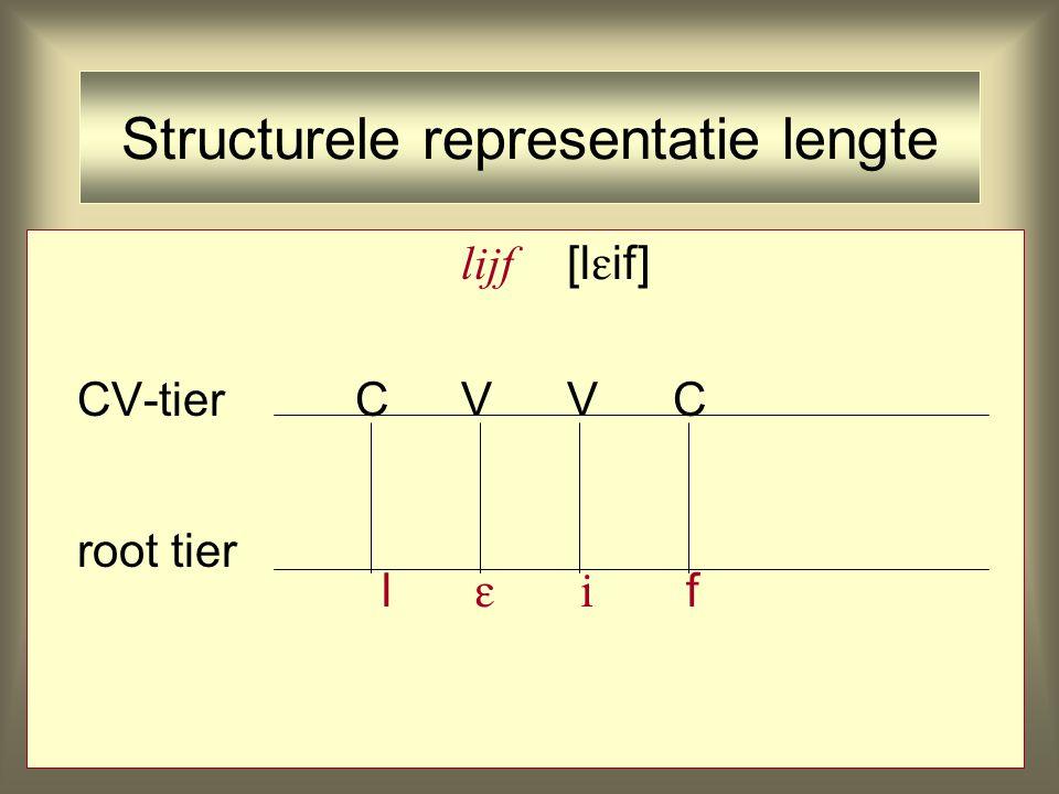 Structurele representatie lengte lijf [l  if] CV-tierCVVC root tier l   f