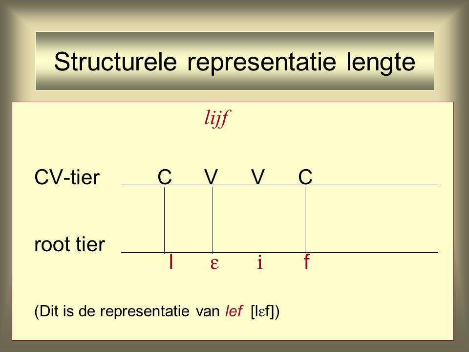 Structurele representatie lengte lijf CV-tierCVVC root tier l   f (Dit is de representatie van lef [l  f])