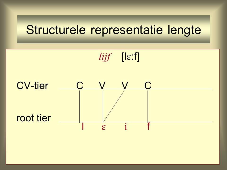 Structurele representatie lengte lijf [l  :f] CV-tierCVVC root tier l   f