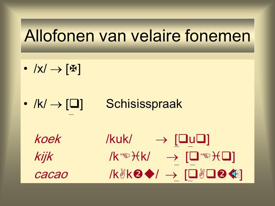Fonologische abstracties /p/ : /b//f/ : /v/ +ant; -cor zowel bilabiaal als labiodentaal /t/ : /d//s/ : /z/ +ant; +cor /  / : /  //  / : /  / -ant; +cor /k/ : /  //x/ : /  / -ant; -cor generaliseert over velair en uvulair