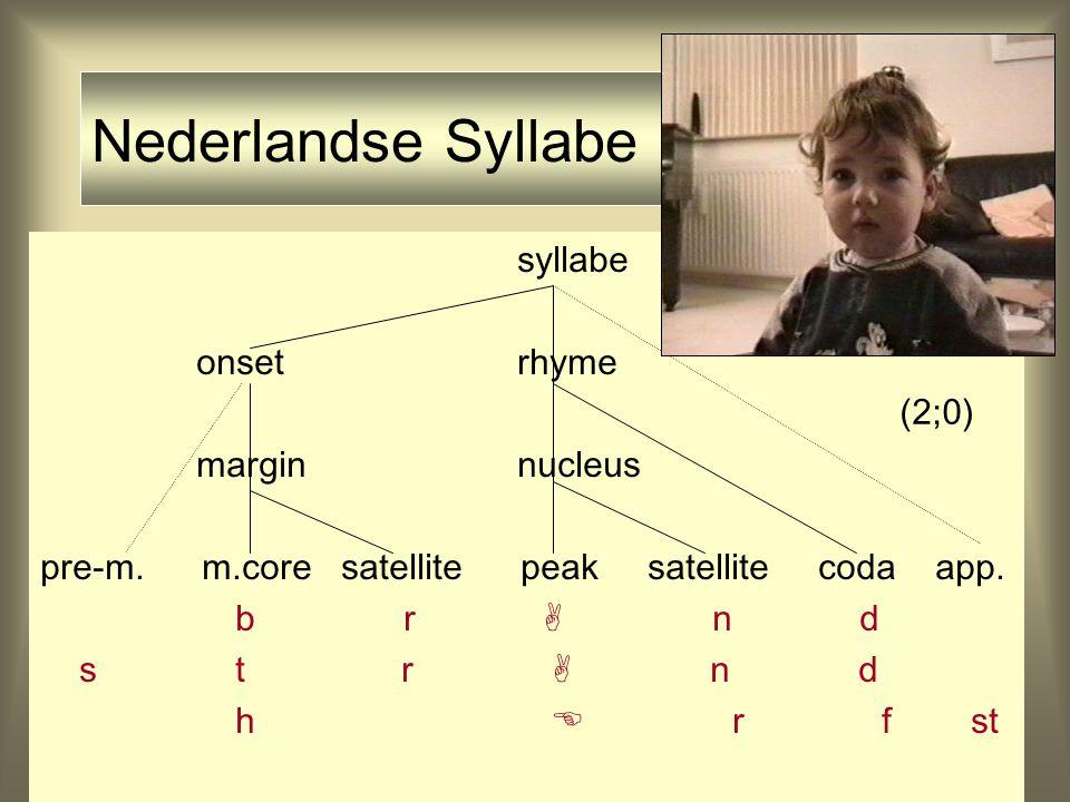 Data Steven (2;0) syllabe onset rhyme margin nucleus m.core peak coda X a p (2;0)