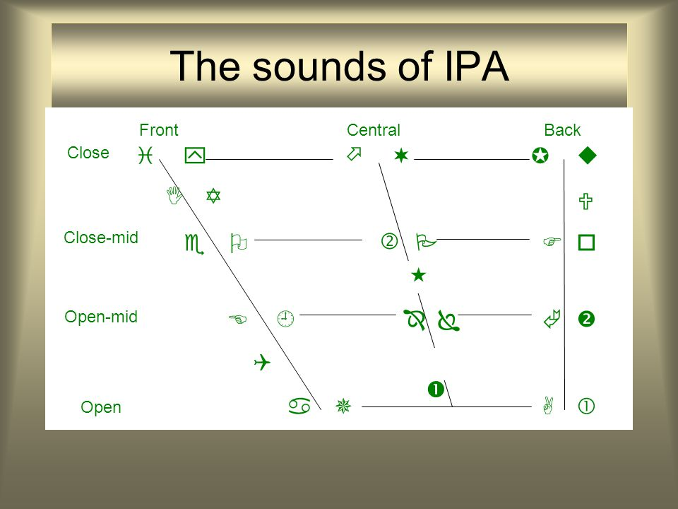 The sounds of IPA                    FrontCentralBack    Close Close-mid Open-mid Open