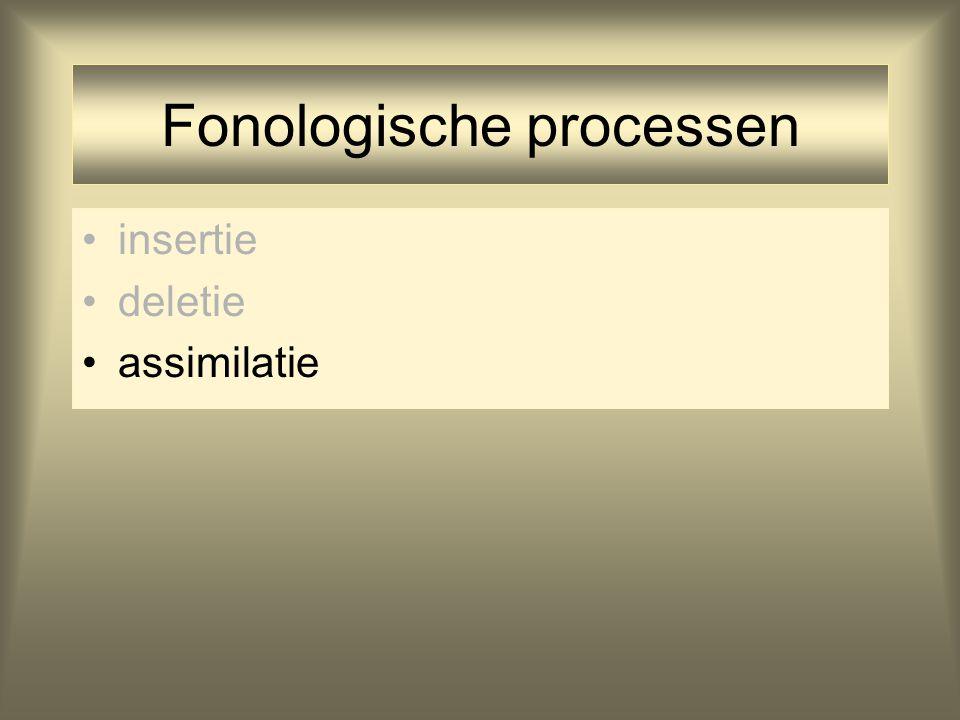 Fonologische processen insertie deletie assimilatie