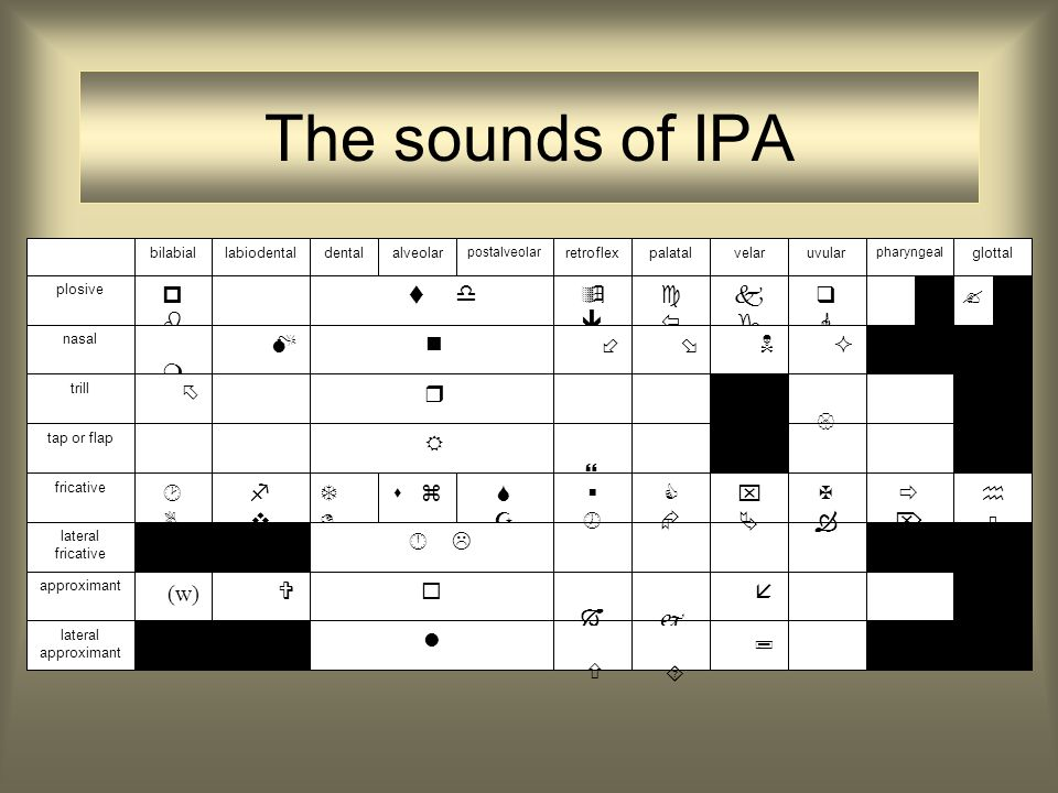 The sounds of IPA                                     glottalalveolardentalbilabiallabiodental pharyngeal velarpalatal postalveolar uvularretroflex lateral fricative approximant nasal fricative tap or flap trill plosive lateral approximant    (w) 